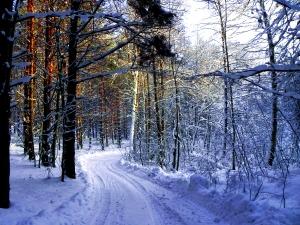 Leczenie zimnem