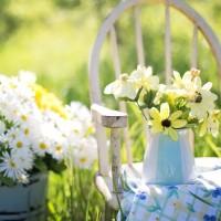 Marzysz o pięknym ogrodzie? Sprawdź, od czego zacząć